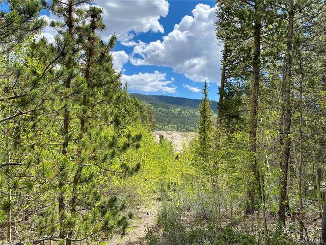 Lot 30 Aspen Street, Alma, CO 80420 (#8325599) :: The DeGrood Team