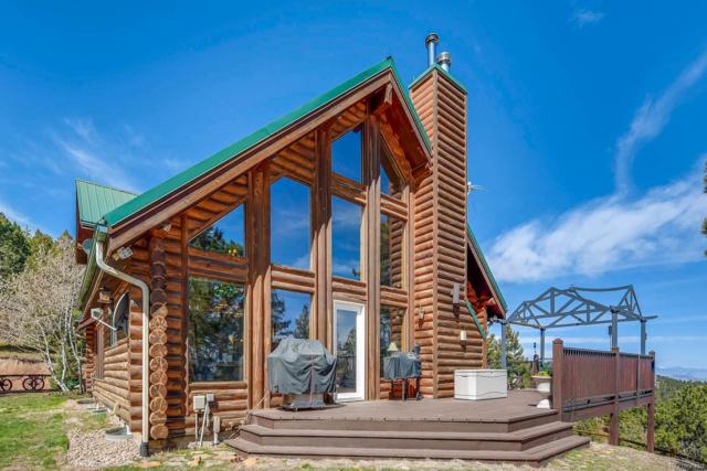 699 Madge Gulch Road, Sedalia, CO 80135 (#8327194) :: Wisdom Real Estate