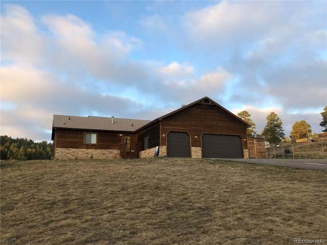 1160 Sleepy Hollow Drive, Bailey, CO 80421 (#8333499) :: Mile High Luxury Real Estate