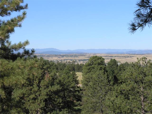 8370 Forest Haven Court, Parker, CO 80134 (#8346972) :: Bring Home Denver with Keller Williams Downtown Realty LLC