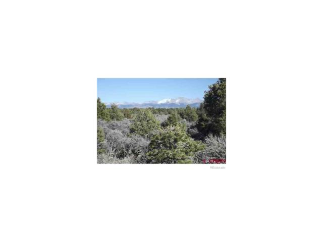 8132 Alta Mesa Dr, San Luis, CO 81152 (MLS #8364781) :: 8z Real Estate
