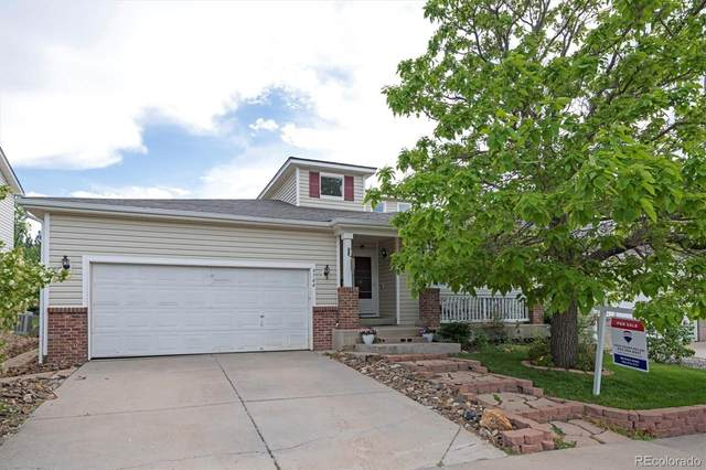 9744 Fox Den Drive, Littleton, CO 80125 (#8393779) :: The Colorado Foothills Team | Berkshire Hathaway Elevated Living Real Estate