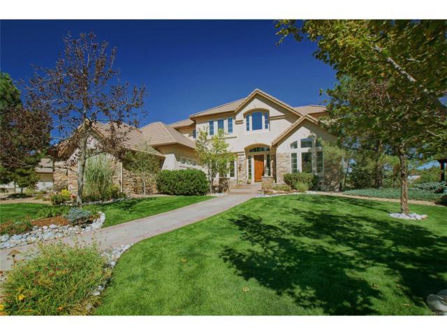 987 Fairchild Drive, Highlands Ranch, CO 80126 (MLS #8397026) :: 8z Real Estate