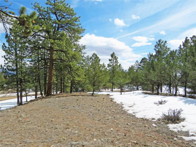 18273 Trail West Drive, Buena Vista, CO 81211 (#8418636) :: The DeGrood Team