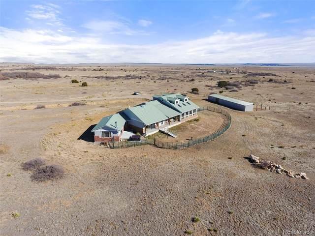 4590 Lascar Road, Rye, CO 81069 (#8422512) :: Colorado Home Finder Realty