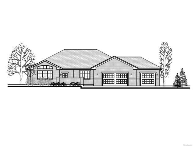 1221 N County Road 125, Bennett, CO 80102 (MLS #8428403) :: 8z Real Estate