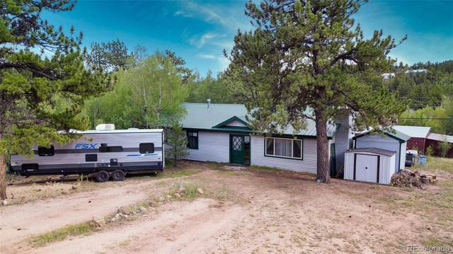 122 Neal Road, Bailey, CO 80421 (MLS #8429802) :: Kittle Real Estate