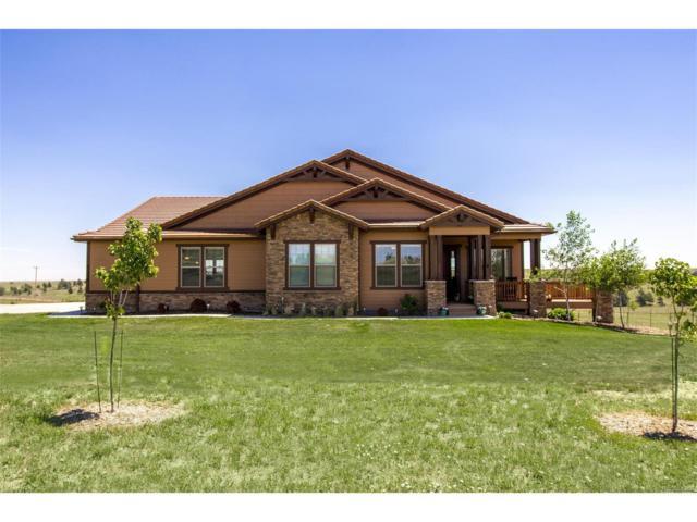 47098 Silver Fir Street, Parker, CO 80138 (MLS #8431544) :: 8z Real Estate