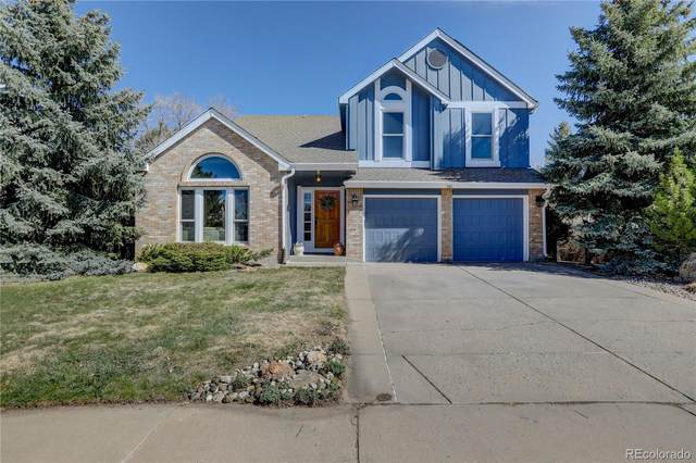 290 Clare Drive, Castle Pines, CO 80108 (#8433267) :: The Harling Team @ HomeSmart