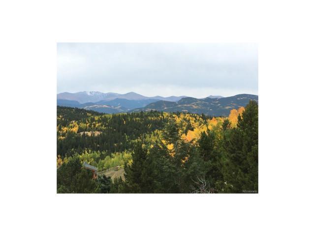 Dakota Mountain, Black Hawk, CO 80422 (MLS #8434107) :: 8z Real Estate