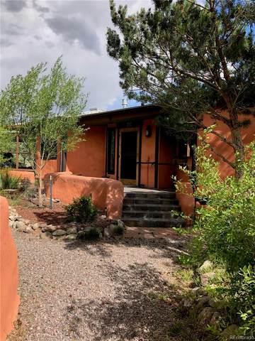 288 Allott Trail, Crestone, CO 81131 (#8449398) :: Compass Colorado Realty
