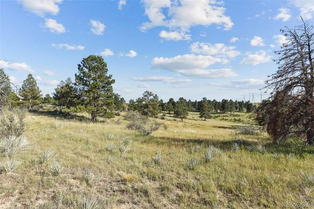 11634 Bell Cross Circle, Parker, CO 80138 (MLS #8477075) :: Bliss Realty Group
