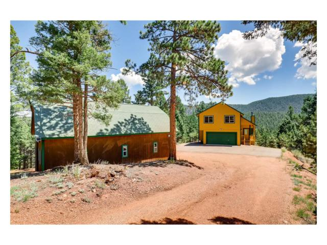 455 Douglas Fir Drive, Woodland Park, CO 80863 (MLS #8480684) :: 8z Real Estate