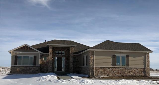 2372 Antelope Ridge Trail, Parker, CO 80138 (#8492149) :: 5281 Exclusive Homes Realty