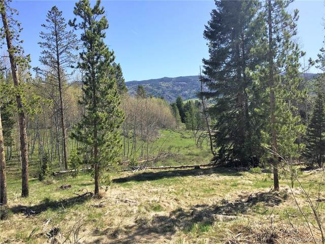 20955 Filly Trail, Oak Creek, CO 80467 (#8493461) :: Real Estate Professionals