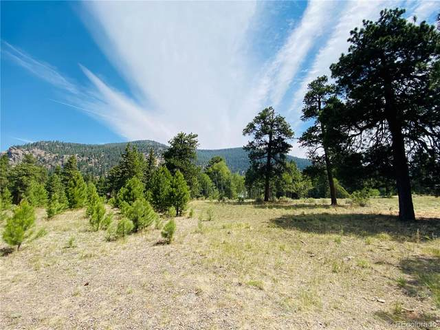 133 Canyon View Drive, Antonito, CO 81120 (MLS #8508878) :: 8z Real Estate
