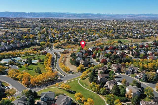 10441 Lions Path, Littleton, CO 80124 (MLS #8523082) :: Kittle Real Estate
