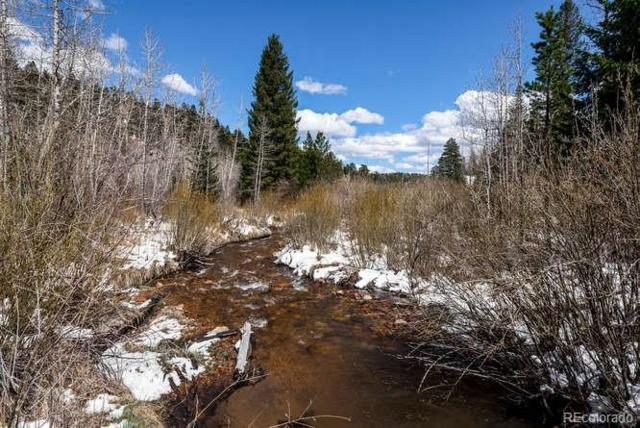 7505 County Road 43, Bailey, CO 80421 (MLS #8540403) :: 8z Real Estate