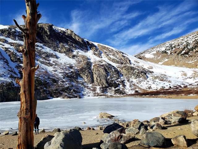 2 Pine Way, Idaho Springs, CO 80452 (#8541974) :: Arnie Stein Team | RE/MAX Masters Millennium