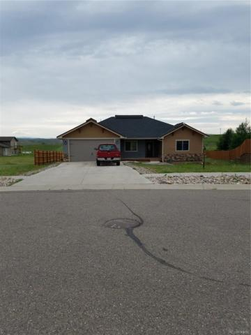 335 Mariposa Drive, Hayden, CO 81639 (#8544194) :: Structure CO Group