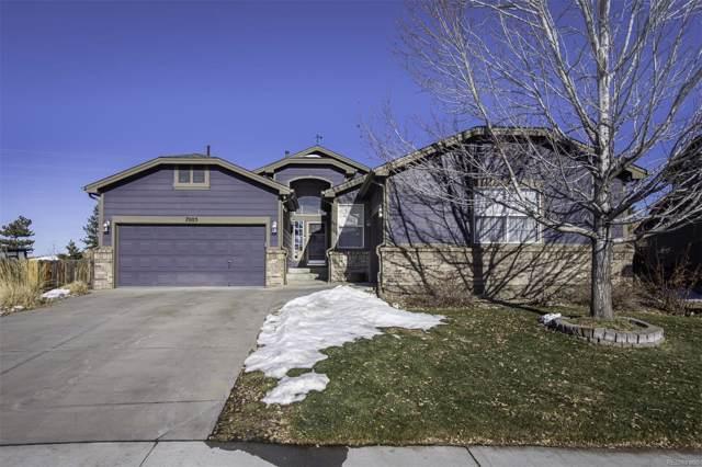 7005 Serena Drive, Castle Pines, CO 80108 (MLS #8553753) :: 8z Real Estate