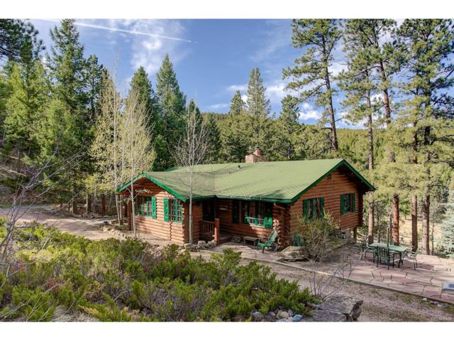 333 Red Lily Place, Evergreen, CO 80439 (MLS #8598592) :: 8z Real Estate