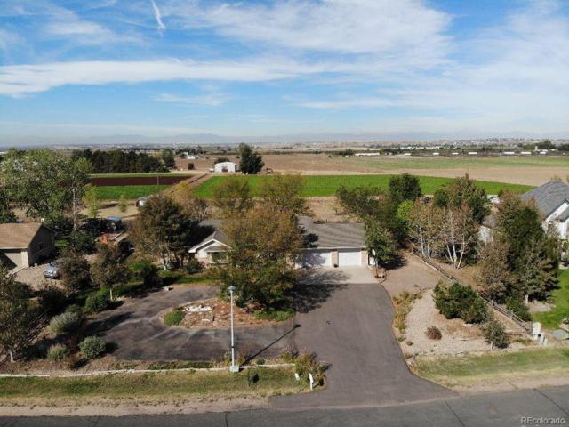 13221 Abilene Street, Brighton, CO 80601 (MLS #8602571) :: 8z Real Estate