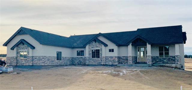 2665 Fox View Trail, Franktown, CO 80116 (#8610440) :: The Griffith Home Team