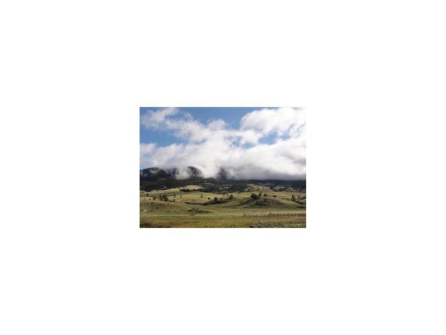00 Hwy 9, Guffey, CO 80820 (MLS #8611987) :: 8z Real Estate