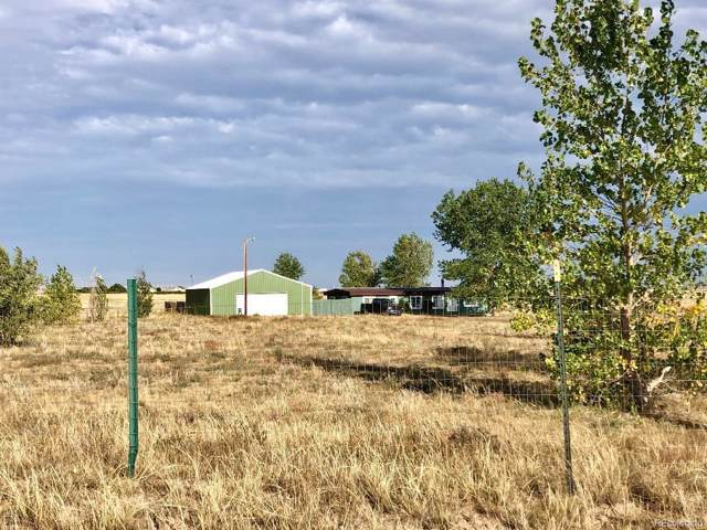 6425 J D Johnson Road, Peyton, CO 80831 (MLS #8641579) :: 8z Real Estate