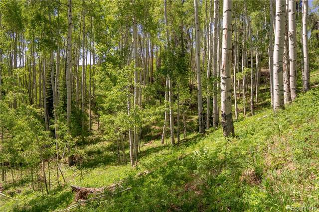 Lot 59 Silver Fox Trail, Oak Creek, CO 80467 (#8642663) :: The DeGrood Team