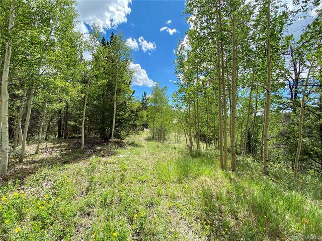 Lot 20 Aspen Street, Alma, CO 80420 (#8647464) :: The DeGrood Team