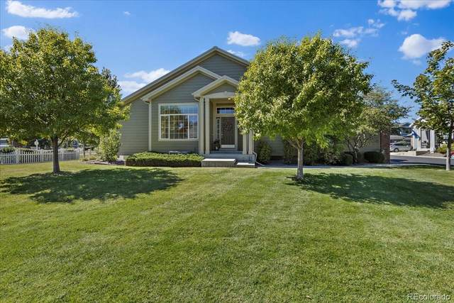 3500 W 126th Place, Broomfield, CO 80020 (#8651294) :: The HomeSmiths Team - Keller Williams