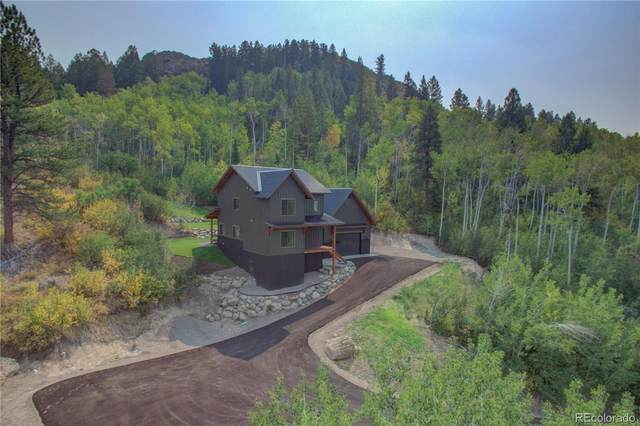 22690 Snowbird Trail, Oak Creek, CO 80467 (#8658343) :: The Margolis Team