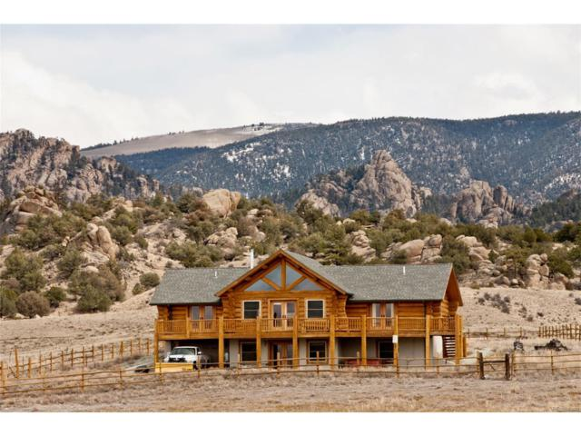 19905 Nachtrieb Ranches Road, Nathrop, CO 81236 (MLS #8675645) :: 8z Real Estate