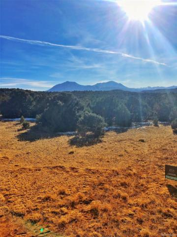Lot 140 River Ridge Ranch Phase 6, Walsenburg, CO 81089 (#8705708) :: Structure CO Group