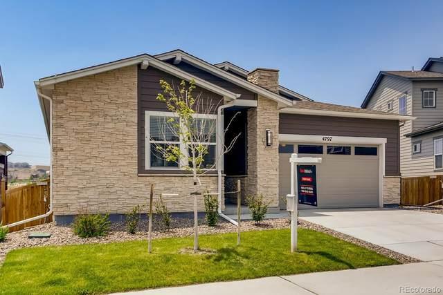 4797 Basalt Ridge Circle, Castle Rock, CO 80108 (MLS #8739808) :: 8z Real Estate