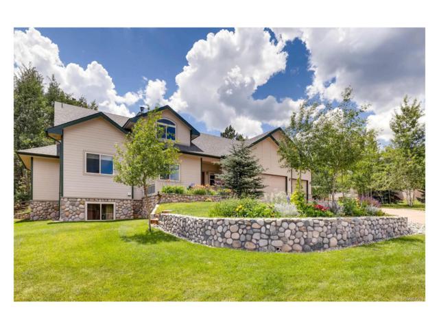 431 Black Bear Trail, Woodland Park, CO 80863 (MLS #8741651) :: 8z Real Estate