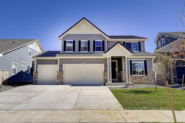 462 Painted Horse Way, Erie, CO 80516 (#8779334) :: Wisdom Real Estate