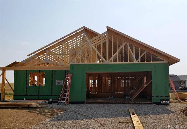 327 Little Bend Road, Hayden, CO 81639 (#8784170) :: Bring Home Denver with Keller Williams Downtown Realty LLC