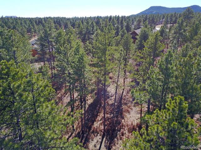 606 Cumberland Road, Larkspur, CO 80118 (MLS #8817974) :: 8z Real Estate