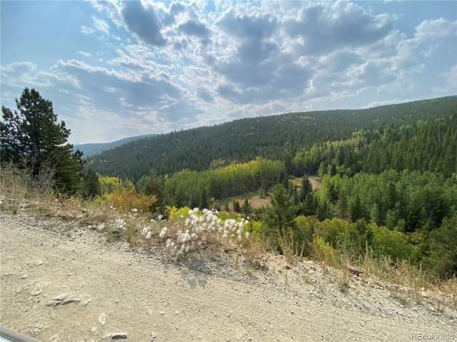 Columbine Road, Idaho Springs, CO 80452 (MLS #8825663) :: 8z Real Estate