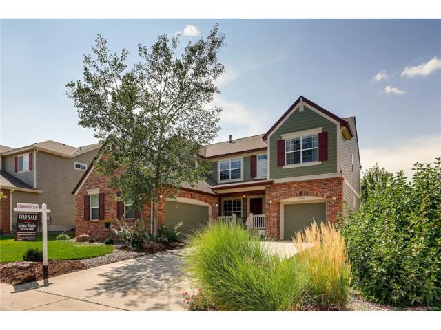 775 Briar Haven Drive, Castle Pines, CO 80108 (#8833391) :: Hometrackr Denver