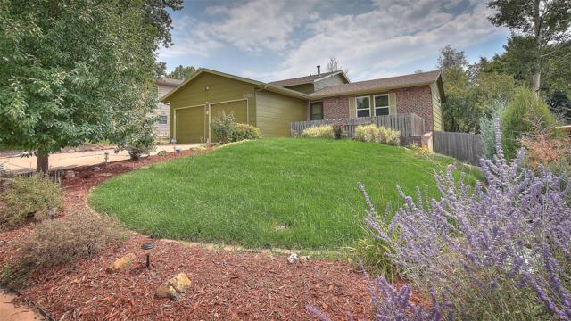 2313 Distinctive Drive, Colorado Springs, CO 80920 (#8860939) :: The Heyl Group at Keller Williams