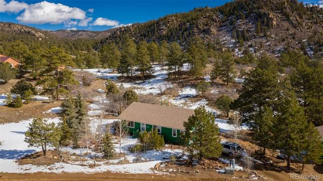 1672 Red Feather Drive, Cotopaxi, CO 81223 (#8906292) :: The Colorado Foothills Team | Berkshire Hathaway Elevated Living Real Estate