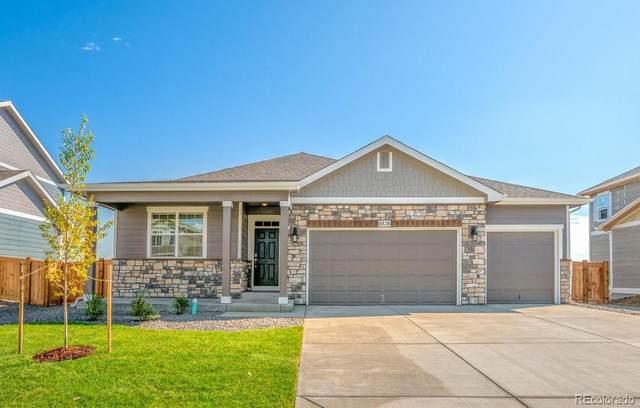 7464 E 157th Avenue, Thornton, CO 80602 (MLS #8928432) :: 8z Real Estate