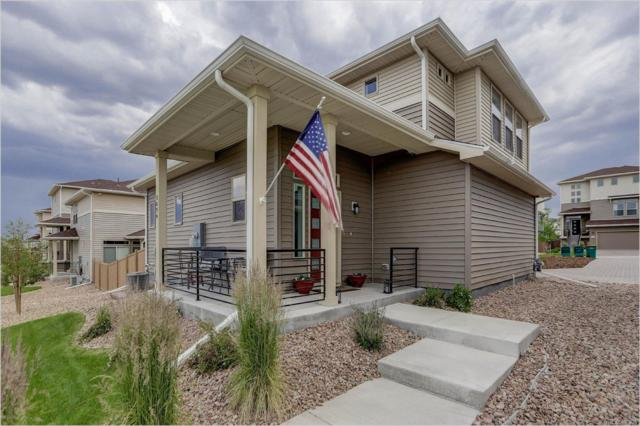 3696 Celestial Avenue, Castle Rock, CO 80109 (MLS #8938562) :: 8z Real Estate