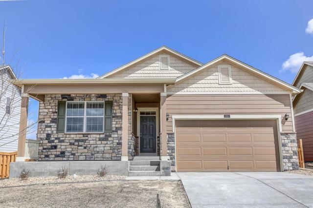 311 Jay Avenue, Severance, CO 80546 (#8955578) :: The Pete Cook Home Group