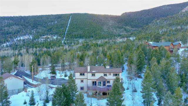 10438 Christopher Drive, Conifer, CO 80433 (#8956262) :: The Dixon Group