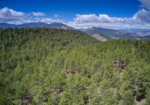 0000 Ruby Ranch Road, Evergreen, CO 80439 (#8964969) :: HomePopper